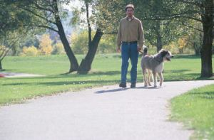 Man walking a dog in the park uid 1185207
