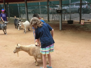 Lexie at the San Antonio Zoo on her first grade field trip.